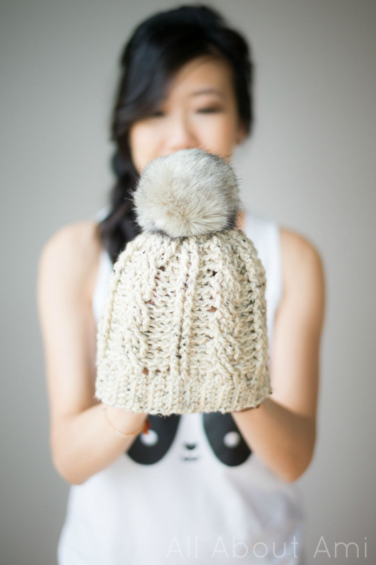 Cabled Beanie Version 2 All About Ami