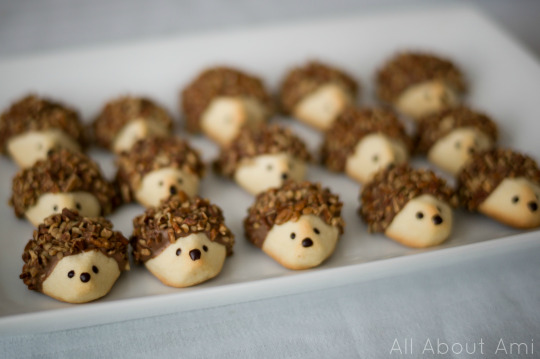 Woodland Creature Birthday Party Hedgehog Cookies