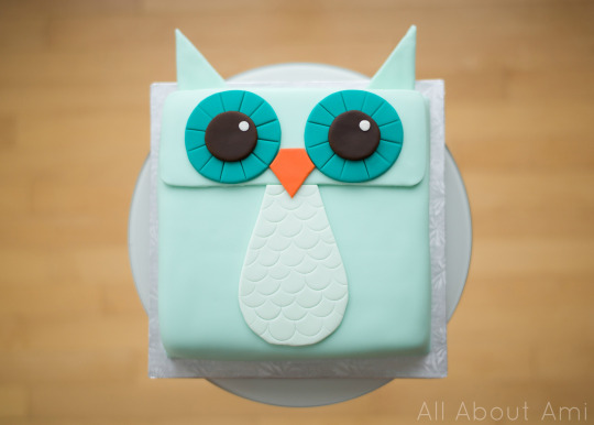 Owl Fondant Cake