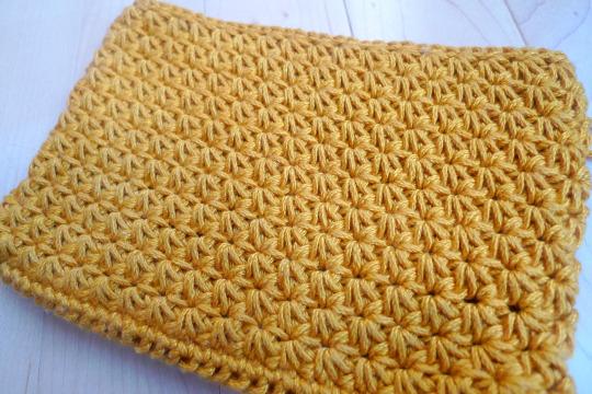 Crochet Star Stitch Pouch