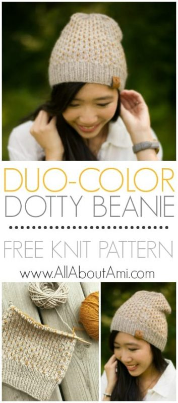 Duo-Color Dotty Beanie Knit Pattern